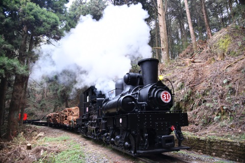 A display of cultural heritage: Logging train operated by the steam locomotive